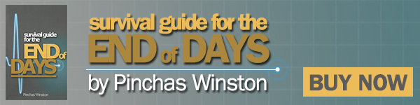 Store-SurvivalGuide-Winston-600WIDE